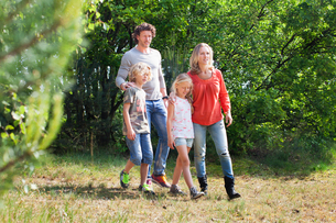 Family walking together in forestの写真素材 [FYI03544656]