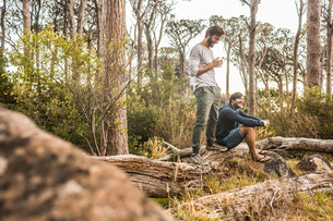 Two men drinking coffee on fallen tree in forest, Deer Park, Cape Town, South Africaの写真素材 [FYI03545197]