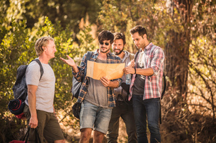 Four male hikers map reading in forest, Deer Park, Cape Town, South Africaの写真素材 [FYI03545250]