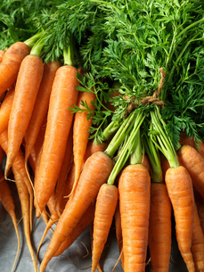 Fresh carrots with carrot tops, tied with string, close-upの写真素材 [FYI03545335]