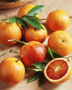 Blood oranges, close-upの写真素材 [FYI03545415]