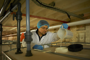 Worker wearing hair net pouring liquid from jug into water tankの写真素材 [FYI03545906]
