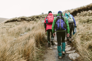 Hikers crossing moor, Yorkshire Dales National Park, Englandの写真素材 [FYI03546502]