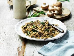 Mushroom risottoの写真素材 [FYI03549380]