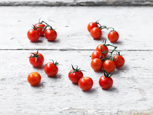 Cherry tomatoes whitewashed wooden surfaceの写真素材 [FYI03549389]