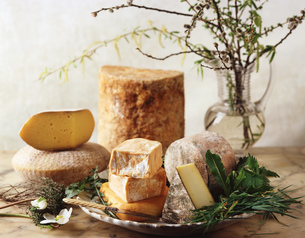 British cheese selectionの写真素材 [FYI03549456]