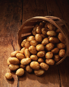 Fresh new potatoes spilling from basket onto wooden tableの写真素材 [FYI03549484]