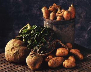 Freshly picked root vegetablesの写真素材 [FYI03549485]