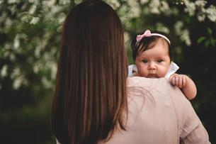 Over shoulder portrait  baby girl in mothers arms in gardenの写真素材 [FYI03550750]