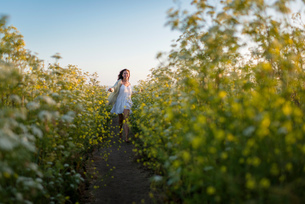 Woman walking through field of wildflowersの写真素材 [FYI03552248]