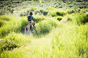 Boy cycling in park, Sandy, Utah, USAの写真素材 [FYI03552657]