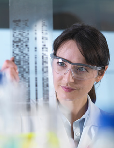 Researcher holding a DNA gel during a genetic experiment in a laboratoryの写真素材 [FYI03552714]