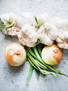 Overhead view of onions and garlic bulbsの写真素材 [FYI03553163]
