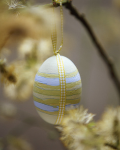 Painted and decorated egg hanging from branchの写真素材 [FYI03553812]