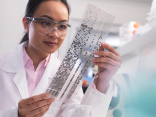 Scientist viewing a DNA profile experiment in a laboratoryの写真素材 [FYI03554813]