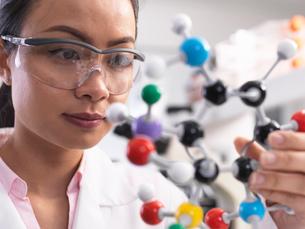 Scientist using molecular model to understand chemical formulaの写真素材 [FYI03554867]