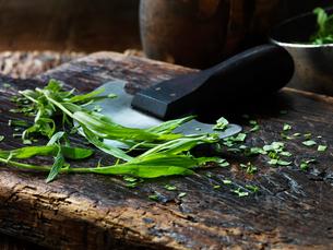 Tarragon, whole and chopped, mezzaluna on vintage chopping boardの写真素材 [FYI03554991]