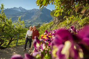 Mature couple hiking along country road, looking at view, Meran, South Tyrol, Italyの写真素材 [FYI03555325]