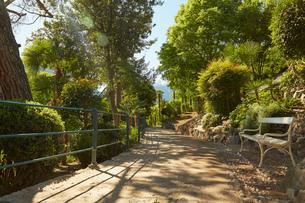 Empty bench on rural pathway, Meran, South Tyrol, Italyの写真素材 [FYI03555338]