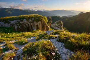 Landscape with wildflowers and rocks, Bolshoy Thach (Big Thach) Nature Park, Caucasian Mountains, Reの写真素材 [FYI03555616]