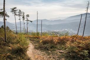 Elevated view of mountain range, Finale Ligure, Savona, Italyの写真素材 [FYI03555913]