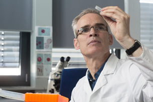 Male meteorologist examining microscope slide in weather station laboratoryの写真素材 [FYI03556380]