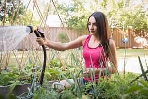 Young woman water plants in garden with garden hoseの写真素材 [FYI03556714]