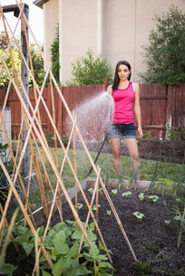 Young woman water plants in garden with garden hoseの写真素材 [FYI03556716]