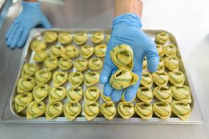 Workers hand making tortellini pasta in pasta factoryの写真素材 [FYI03556735]