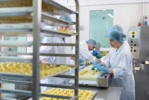 Workers hand making tortellini pasta in pasta factoryの写真素材 [FYI03556736]