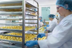 Workers hand making tortellini pasta in pasta factoryの写真素材 [FYI03556738]