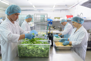 Workers hand making pesto sauce in pasta factoryの写真素材 [FYI03556743]