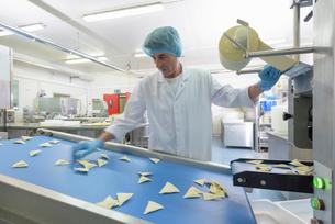 Worker sorting ravioli in pasta factoryの写真素材 [FYI03556746]