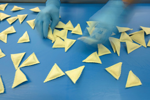 Worker sorting ravioli in pasta factoryの写真素材 [FYI03556747]