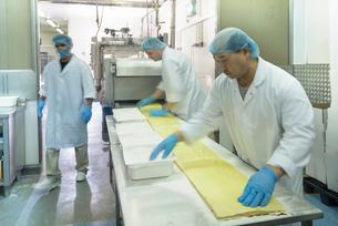 Workers making fresh pasta sheet in pasta factoryの写真素材 [FYI03556752]