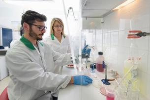 Technicians in food testing laboratory in food factoryの写真素材 [FYI03556756]