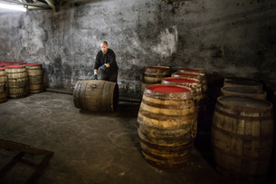Worker rolling whisky cask in whisky distillery warehouseの写真素材 [FYI03556973]
