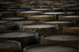 Rows of wooden whisky casks in whisky distilleryの写真素材 [FYI03556975]