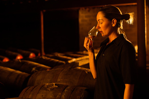Female taster smelling whisky in glass at whisky distilleryの写真素材 [FYI03556978]