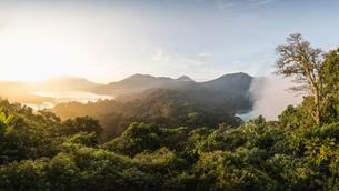 Elevated view of coast and rainforest at sunset, Wana Giri, Bali, Indonesiaの写真素材 [FYI03557891]