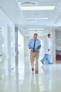 Senior doctor walking along hospital corridor reading medical notesの写真素材 [FYI03558228]