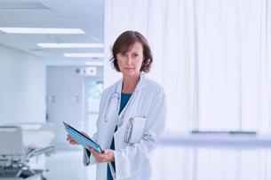 Portrait of confident female doctor in hospital wardの写真素材 [FYI03558275]
