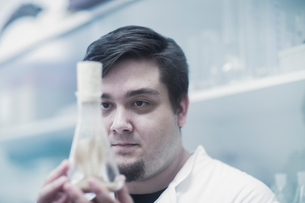 Scientist examining sample in beakerの写真素材 [FYI03558541]