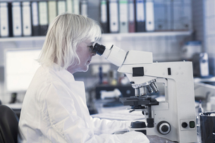 Scientist using microscope in laboratoryの写真素材 [FYI03558544]
