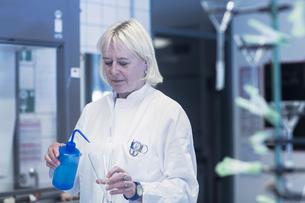 Scientist pipetting liquid into flask in laboratoryの写真素材 [FYI03558545]