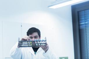 Scientist examining test tubes in rackの写真素材 [FYI03558546]