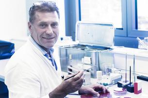 Scientist examining sample in petri dishの写真素材 [FYI03558549]