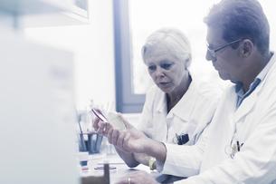 Scientists examining sample inside petri dish in laboratoryの写真素材 [FYI03558555]