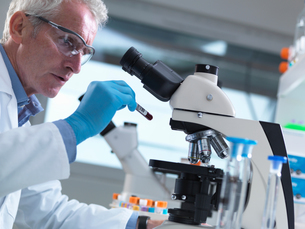 Scientist reading sample information on a blood sample ready to view under a microscope in laboratorの写真素材 [FYI03558758]