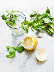 Glass of water with lemon and mintの写真素材 [FYI03558779]